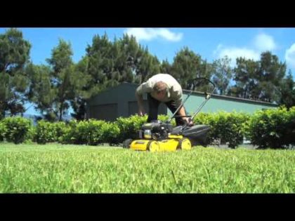 Scarifying to Correct Thatch in Your Lawn