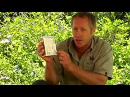 The Importance of Soil PH for your Sir Walter Lawn